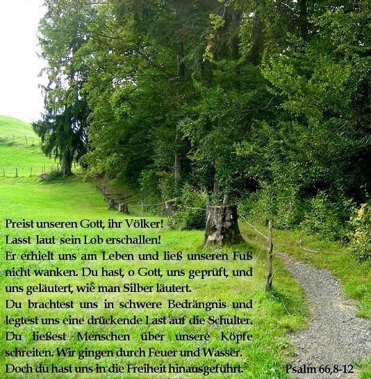 psalm66-3.jpg
