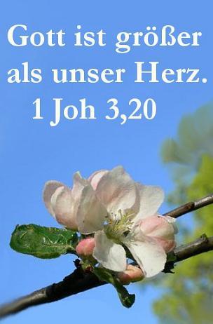 gott_herz_11.jpg