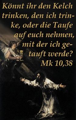 29b_oelberg.jpg