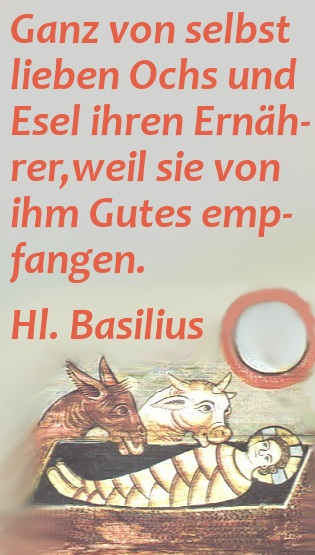 basilius_krippe.jpg