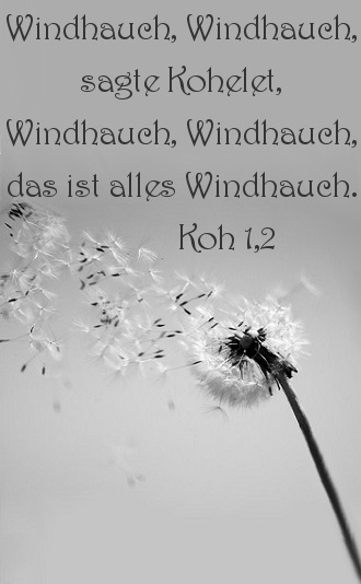 18C_Windhauch